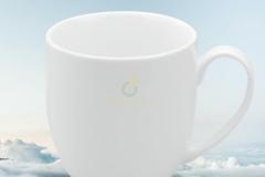 ly-su-minh-long-camellia-trang-0-4l-1-2