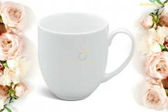 ly-su-minh-long-camellia-trang-0-4l-1