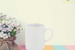 ly-su-lyminh-long-jasmine-trang-0-3l-6