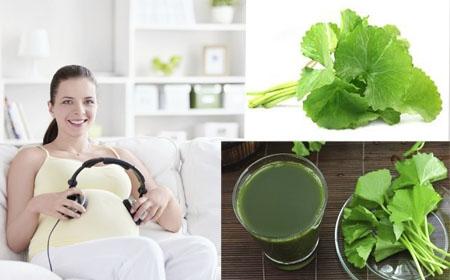 Phụ nữ mang thai uống nước rau má được không Binhnuocteen